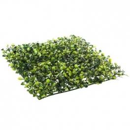 Carré de buis - 25 x 25 x 3 cm - Polypropylène - Vert